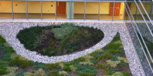 Duke Medicine Pavilion Courtyard