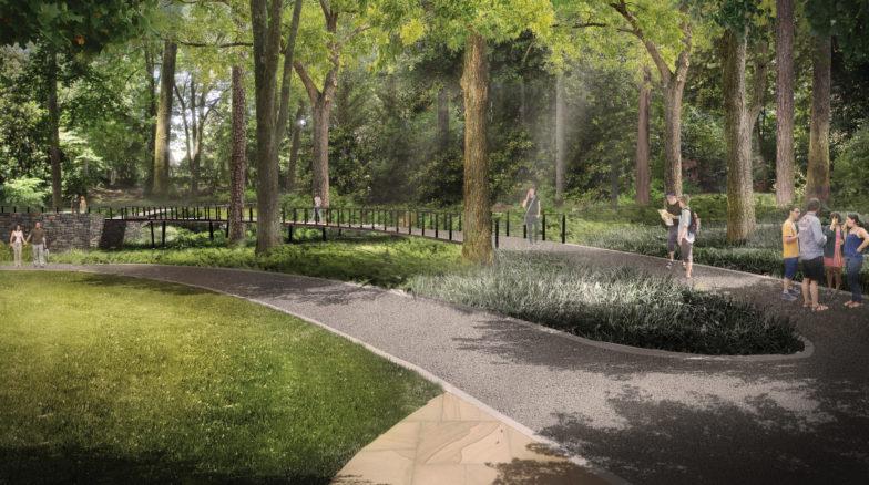 Surface 678 - Sarah P. Duke Gardens