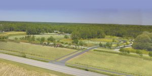 Beech Bluff County Park