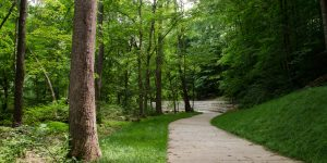 Bolin Creek Greenway Phase III