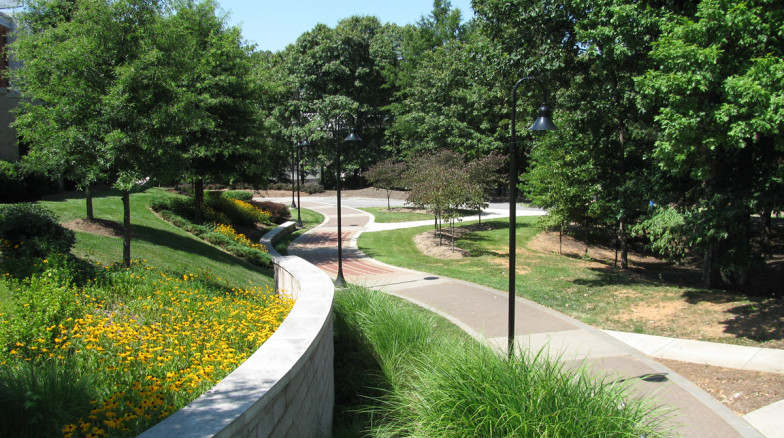 Surface 678 - Campus Green