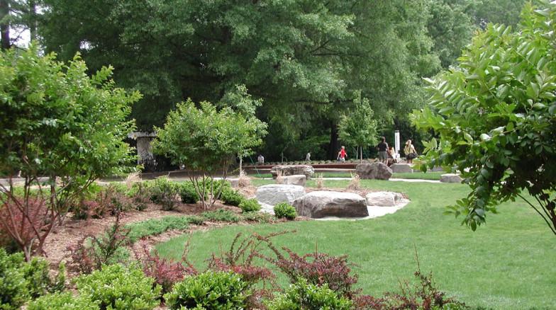 Surface 678 - Turlington Rain Garden