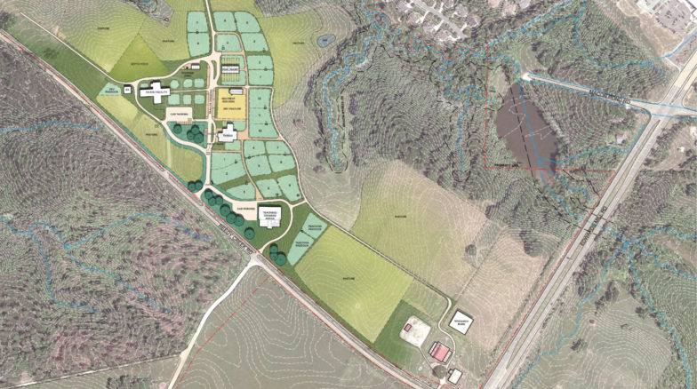 Surface 678 - Reedy Creek Equine Facility Feasibility Study