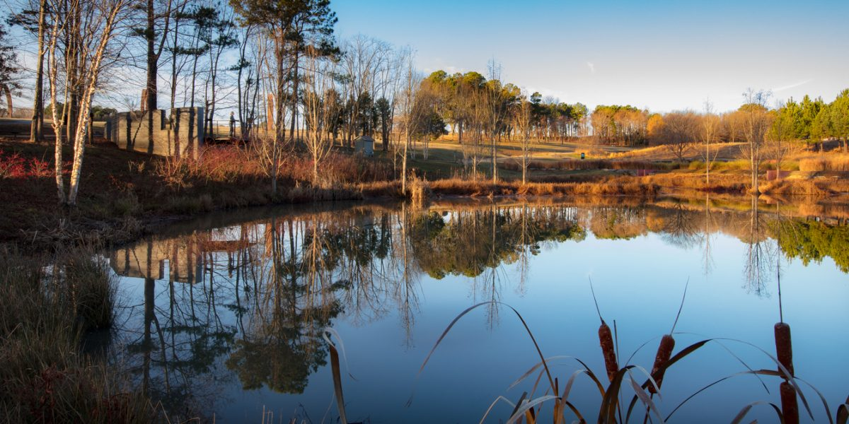NC Museum of Art Stormwater Pond